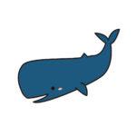 マッコウクジラの食性ダイオウイカ以外は?食用で美味しい?